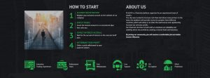 Plazer.biz Information About Company