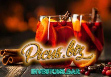 Preview Picus.biz