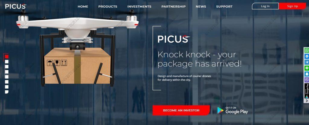 Picus.biz Cover