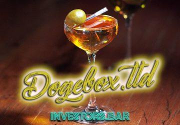 Dogebox.ltd Cover