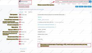 Etherscan transaction info